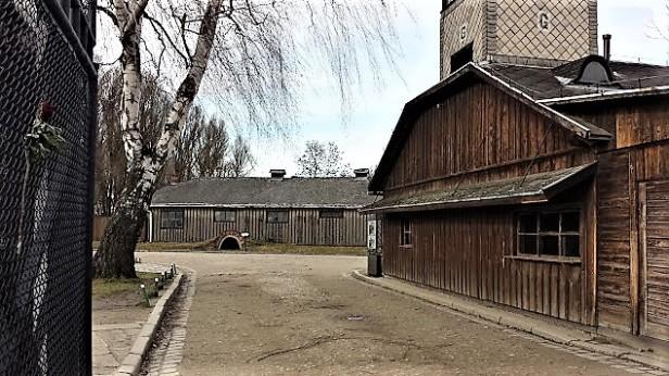 20160202_130527_Więźniów Oświęcimia