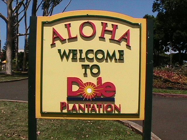 Hawaii08 004