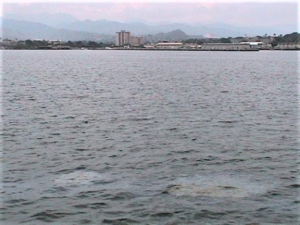 Hawaii08 026